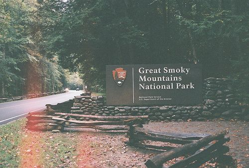 Great smoky mountains national park great smoky for Privately owned cabins in the smoky mountains