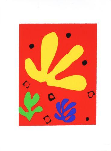 Vegetal Elements by Henri Matisse
