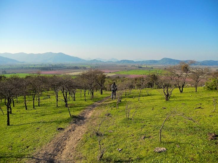 Valle de San Vicente, desde Los Mayos.