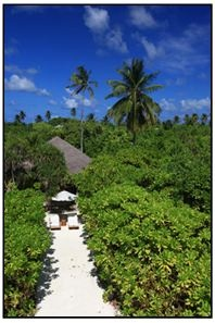 http://jobmaldives.org/blog/chinese-chef-vacancy-six-senses-laamu-maldives/