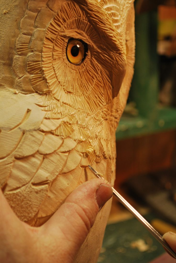 Wildlife in wood owl carvings by barry w benecke of st