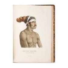6) Watercolours by Petit and Lesueur ile ilgili görsel sonucu
