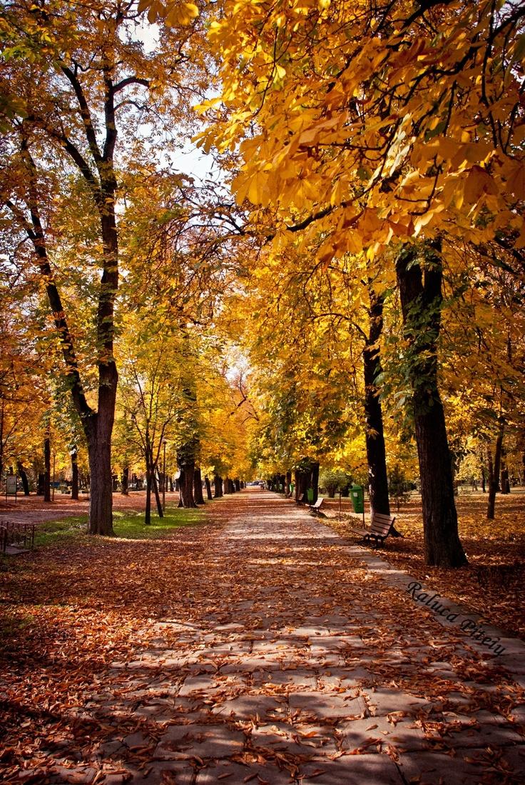 Autumn in Cluj/Napoca (Romania) Central Park, 2009