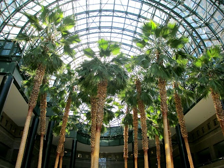 Winter Gardens Atrium New York. Read more about New York autumn: http://www.imperatortravel.com/2012/09/discover-new-york-outdoors-top-5-sights-of-the-big-apple.html