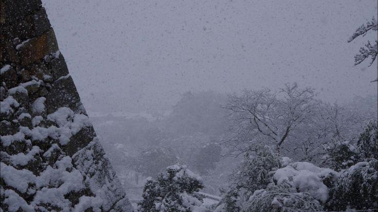 雪の彦根城 東海道本線にて