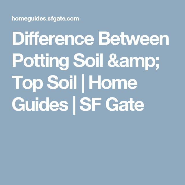 Difference Between Potting Soil & Top Soil | Home Guides | SF Gate