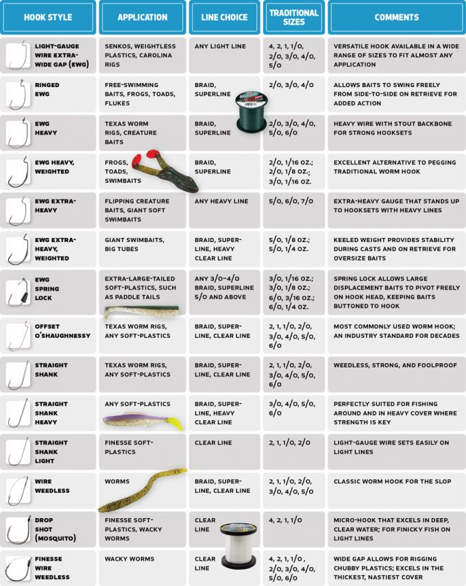 25 best ideas about fishing rigs on pinterest bass for Bass fishing guide