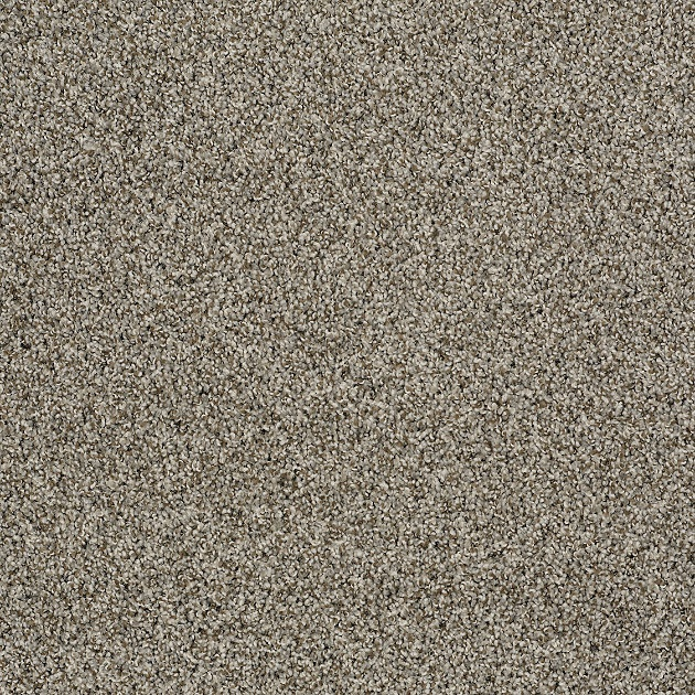 Shaw Textured Carpet Meze Blog