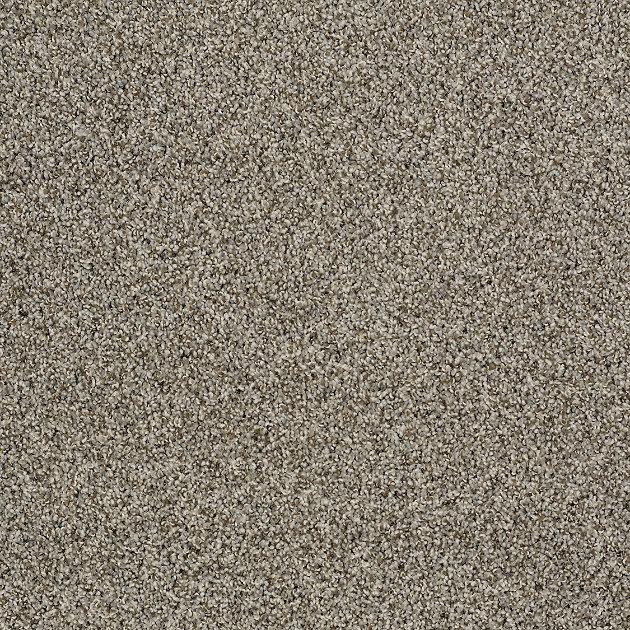 Best 25+ Carpet Colors Ideas On Pinterest
