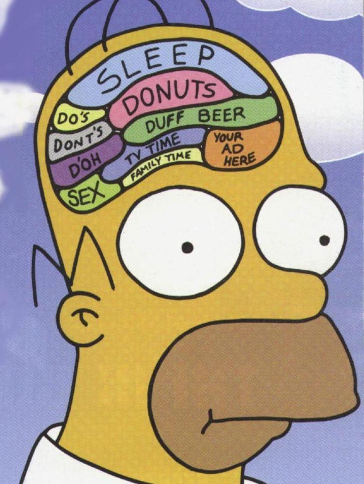 http://1.bp.blogspot.com/-bN8jfE1sqyc/UaTSZcf50aI/AAAAAAAAAnE/yYa7_Yciciw/s1600/brain-large.jpg