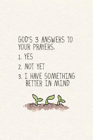 3 answers to your prayers... by maija.spire