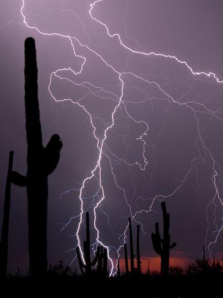 Wüste Blitz andere