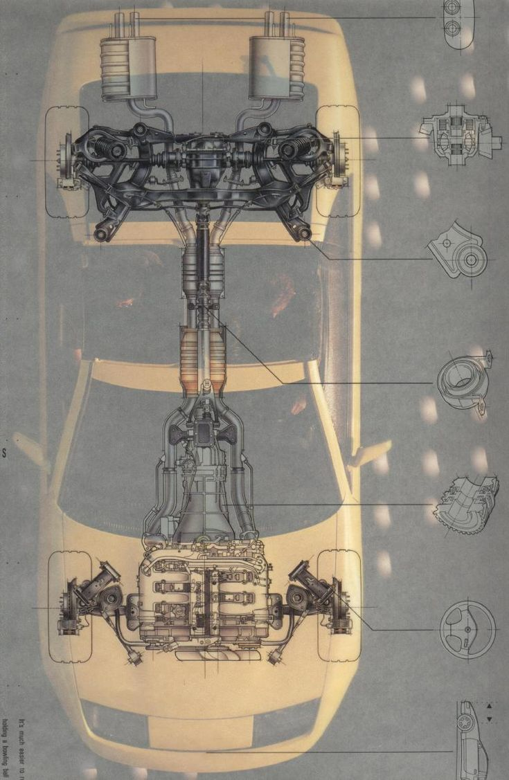 X-RAY inspiration  anatomy of an object  scientific  complex  structural, something to learn from