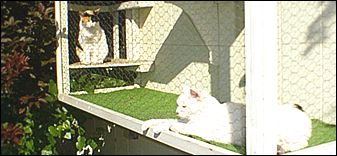 The Cat Terrace Window Cage