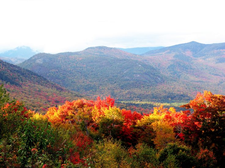 What does the Autumn Equinox Mean For The Earth?: http://blog.avasflowers.net/what-autumn-equinox-means-for-earth