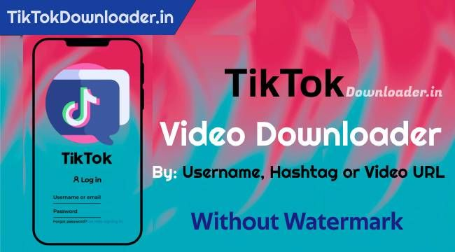 Tiktok Video Downloader Mp3 Song Download Video Songs