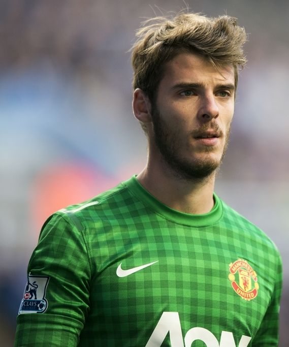 The Best Haircut Names For Female Ideas On Pinterest Zach - David de gea hairstyle 2014