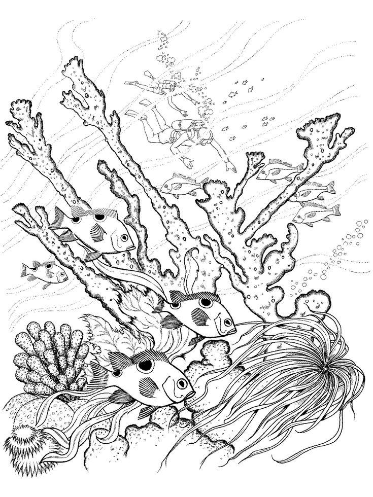 17 best School Learning Underwater Friends Coloring Pages