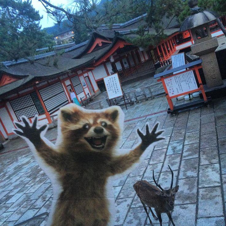 In front of Itsukushima Shrine on Miyajima. Half an hour until fireworks! #wheresrory #MiyajimaFireworksFestival #宮島花火大会 #宮島水中花火大会 #Japan #厳島神社 #ItsukushimaShrine