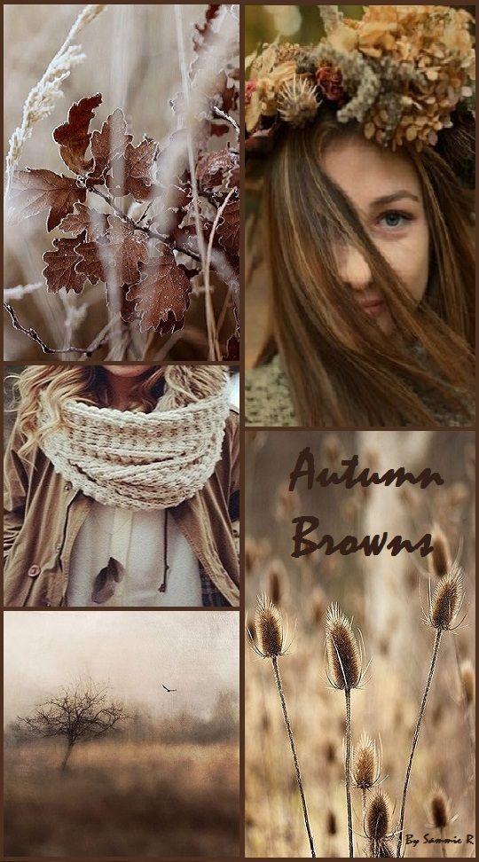 Autumn Browns By Sammie R