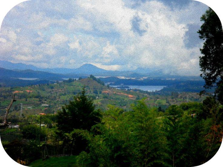 """""""Tumben monte, siembren pastos"""" La dureza de la montaña.... Efren Herreros , La casa de las 2 palmas #antioquia #AntioquiaFederal"""