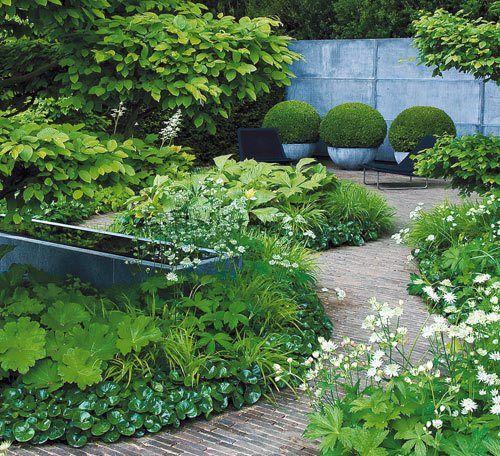 """""""The Laurent Perrier Garden"""" med sin sparsmakade färgskala, mörka zinkfat och vindlande gångar runt formklippta avenboksträd. I förgrunden vit stjärnflocka, runt zinkbehållaren daggkåpa och marktäckande hasselört."""
