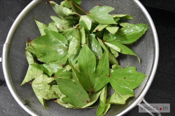 Gongura Roselle Chutney Recipe Chutney Recipes Recipes Chutney