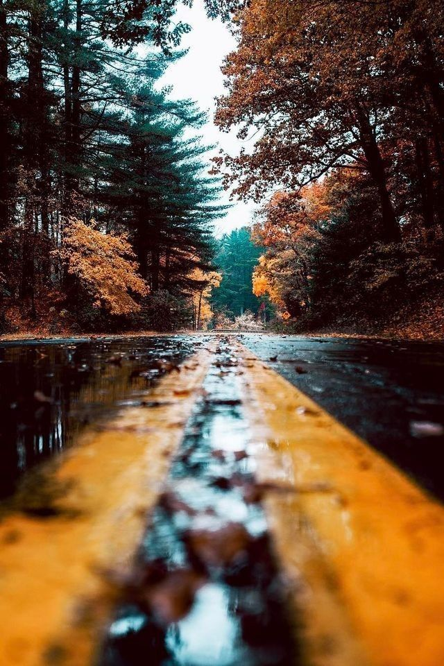 10 Breath Taking Places To Visit In Autumn Nature Photography Autumn Photography Nature Pictures