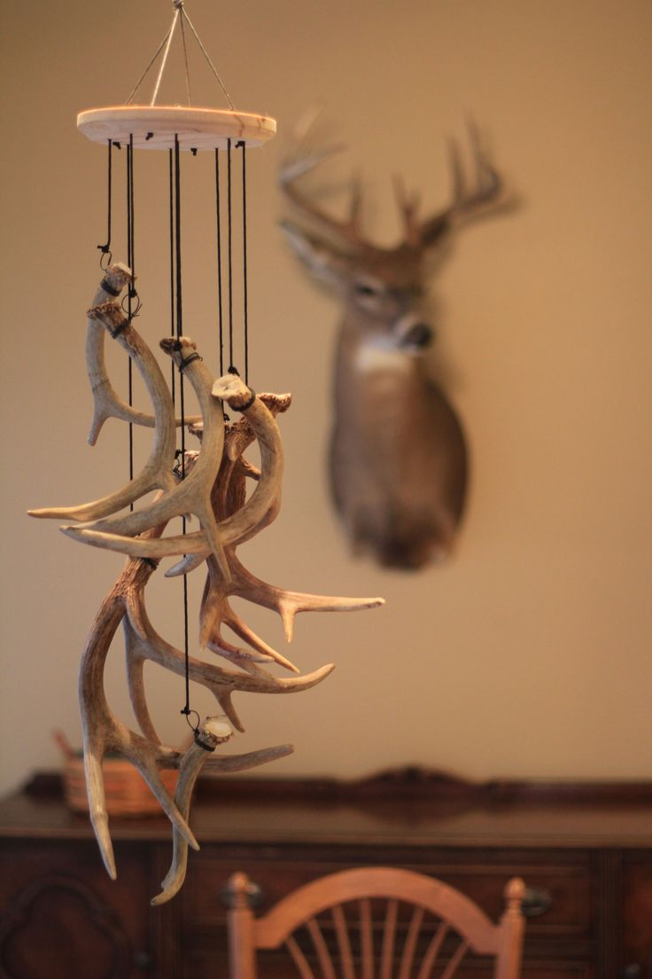 "If you are a shed hunter or have some antlers around that may not have reached the status of ""wall hanger"".  An antler wind chime is a unique way to display your bones!"