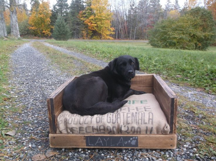 Rustic Dog Bed for Extra Large Dogs, Reclaimed Dog Bed, Pallet Furniture, Pet Bed by SameAsNever on Etsy https://www.etsy.com/listing/252115404/rustic-dog-bed-for-extra-large-dogs