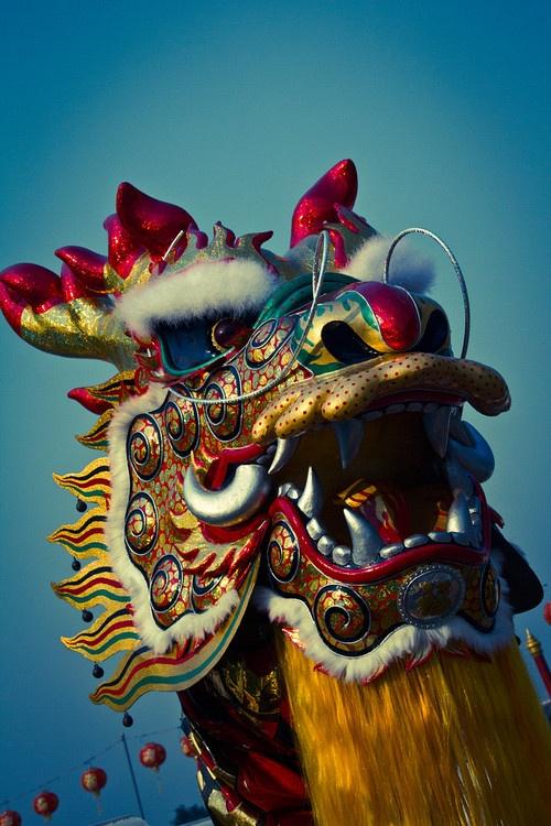 dragons den chinese