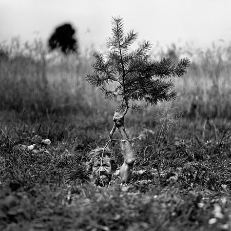 Adam Panczuk  The Karczebs are people in Poland who are strongly attached to the land they cultivate.Adam Panczuk, Series Karczeb, Passages Secret