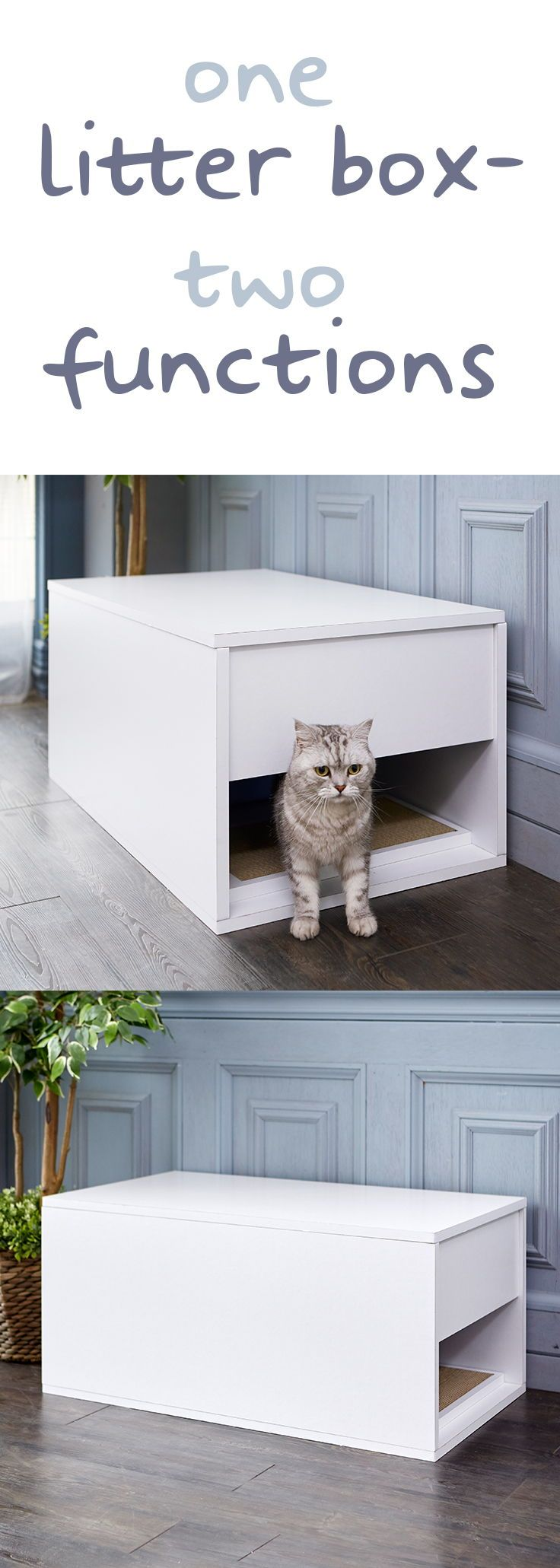 Best Space Saving Cat Litter Box Ideas Small Apartment Cat Cat Litter Box Litter Box