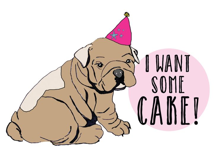 Bulldog wants cake! - Birthday Card - Paper Greeting Card by Thingsforasmile on Etsy