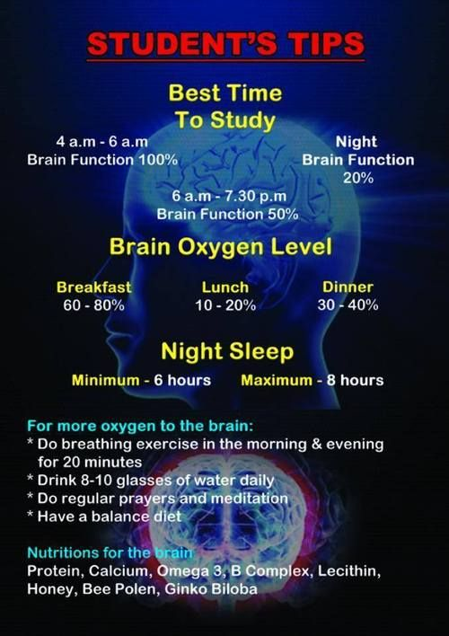 studyhack Check out the best time to study 46 am
