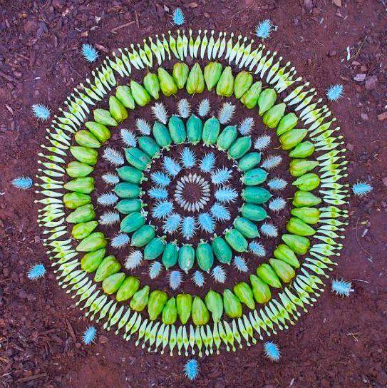 a gazillion different petal and plant circle designs