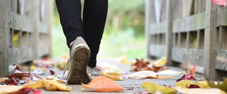 Why a Simple Walk is the Brain and Body Boost You Need – The Mom Gene