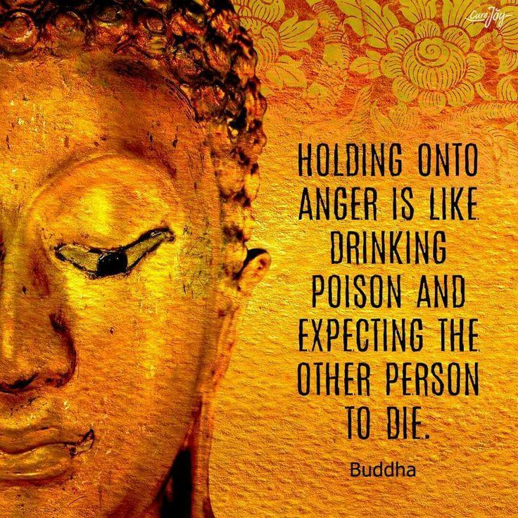 Citaten Van Rumi : Beste ideeën over citaten van buddha op pinterest