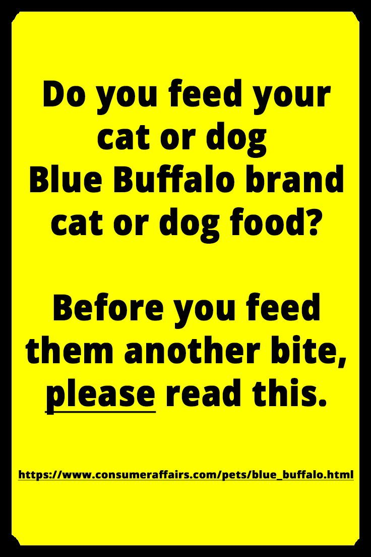 Read What Others Are Saying About Their Bad Experience Horrible And To Think Once I Adopt A Shelter Dog That I Was Gon Blue Buffalo Saving Cat Losing A Dog