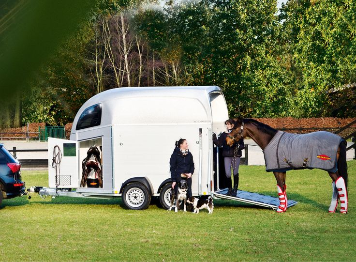 Boeckmann NZ Floats http://www.equinetrader.co.nz/directory/boeckmann-new-zealand/