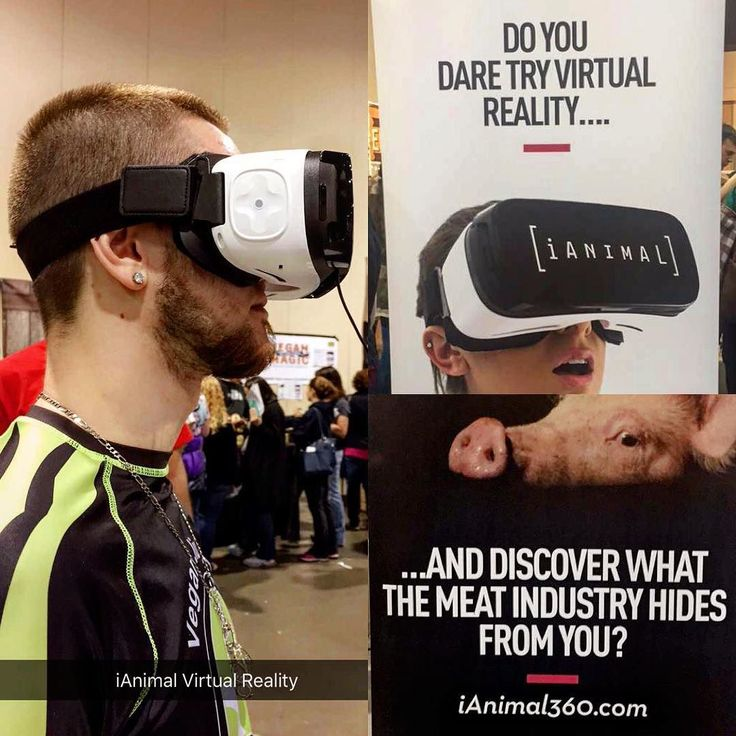Image result for do you dare try virtual reality and discover what meat industry keeps from you