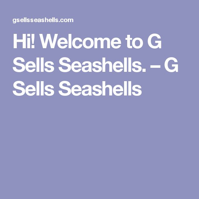 G Sells Seashells First Blog Post