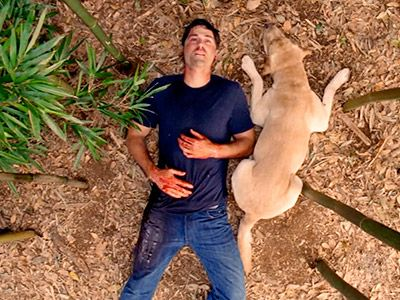 Lost | ''THE END'' WAS ONLY THE BEGINNING The death-happy final episode of Lost fascinated and infuriated viewers