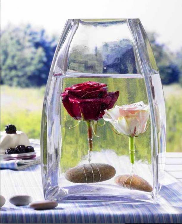 Rosen in eine mit Wasser gefüllten Vase geben. Mit Draht und Steinen einschweren.