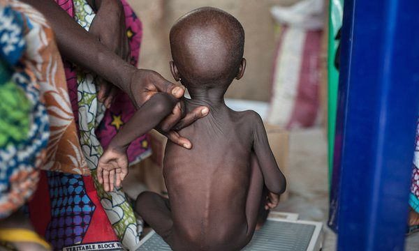 UN accused of failing as north-east Nigeria at risk of famine | World news | The Guardian