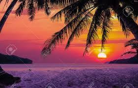 Image result for sunrise sunset
