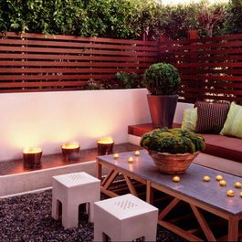 Privacy Screen Plants Design Ideas, Pictures, Remodel, and Decor - page 3