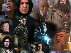 I got:  100% on Harry Potter Character Quiz