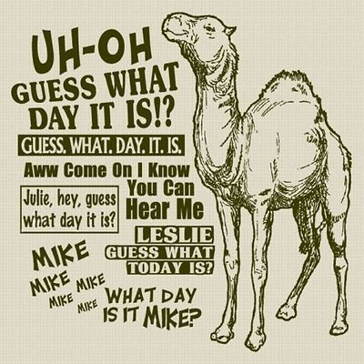 BEST COMMERCIAL EVER!!! :) HUMP DAY!! I really do love this commercial: Laughing, Humpday Camels, Bands Camps, Hump Day, Quotes, Funny Commercial, Funny Stuff, Humor, Favorite Commercial