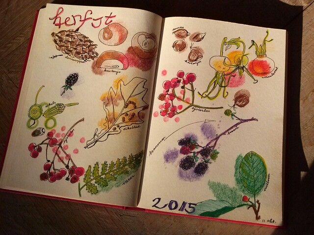 autumn impression by Jitske Jacobs